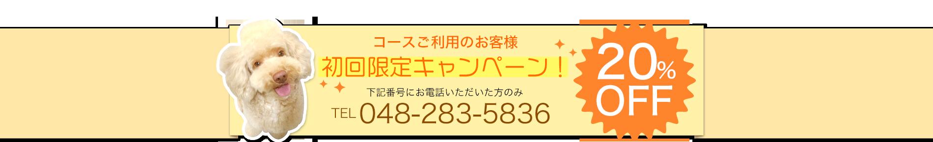 コースご利用のお客様 初回限定キャンペーン!下記番号にお電話いただいた方のみ20%OFF TEL 048-283-5836